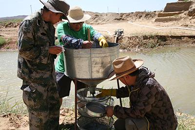 宁夏青铜峡鸽子山遗址入围2016年度全国十大考古新发现终评项目