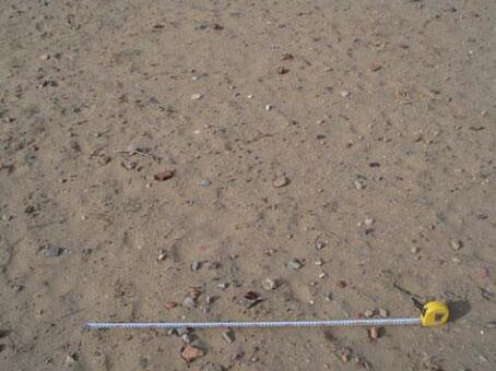 水洞沟遗址采集的鸵鸟蛋皮装饰品研究