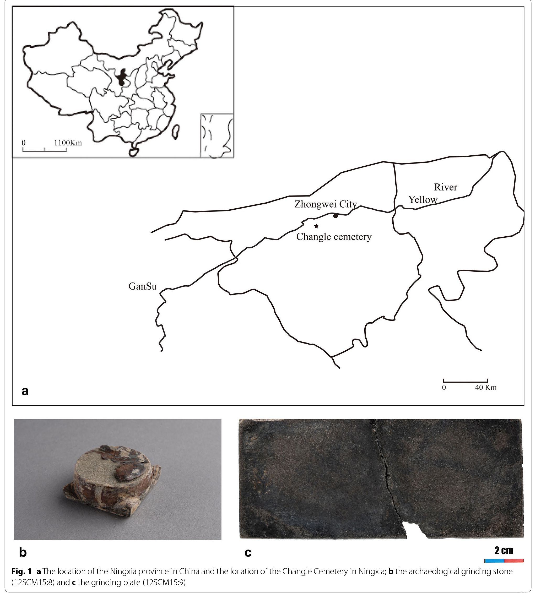 Identification of the proto-inkstone by organic residue ...