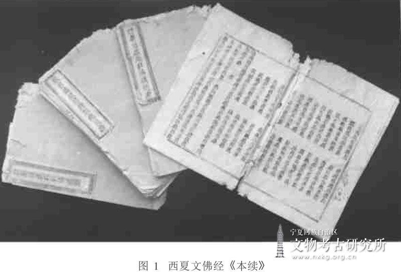 从贺兰拜寺沟方塔西夏文献纸样分析看西夏造纸业状况