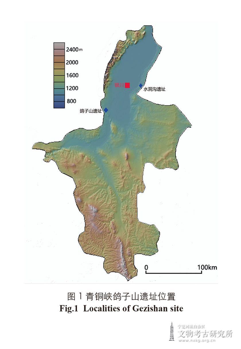 宁夏青铜峡鸽子山第15地点发掘报告